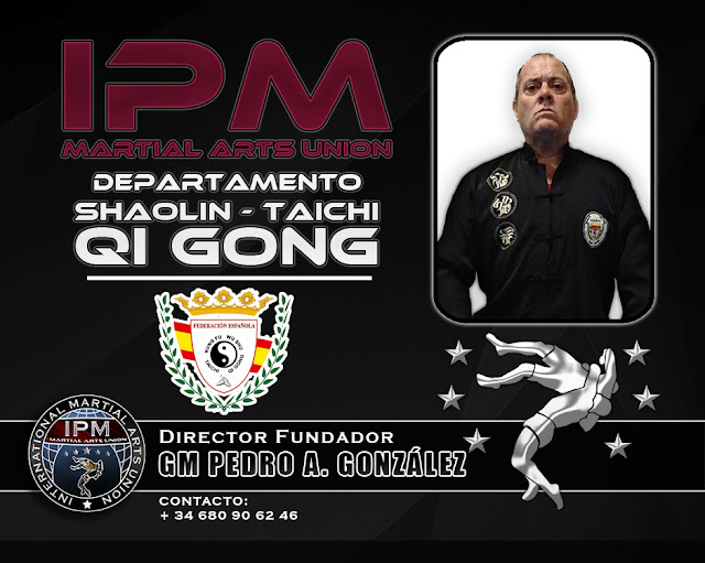 SHAOLIN - TAICHI QI GONG - PERFIL DEPARTAMENTO - IPM - PEDRO GONZALEZ