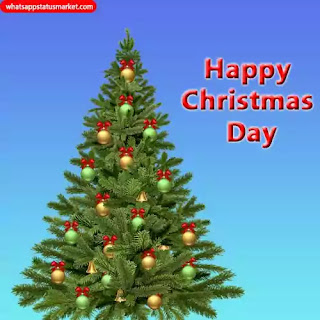 Christmas Day image shayari hindi