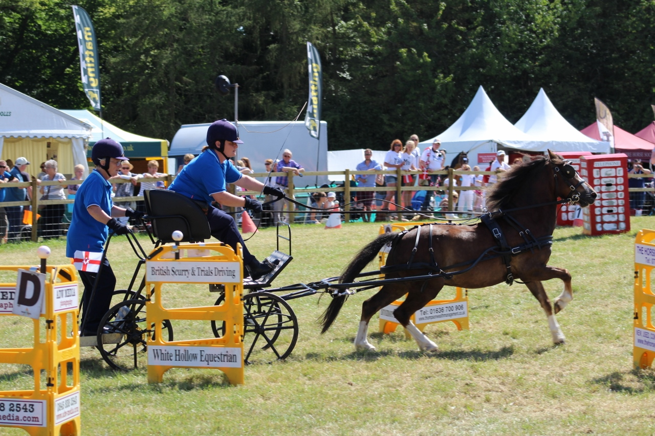 British Scurry and Trials Driving