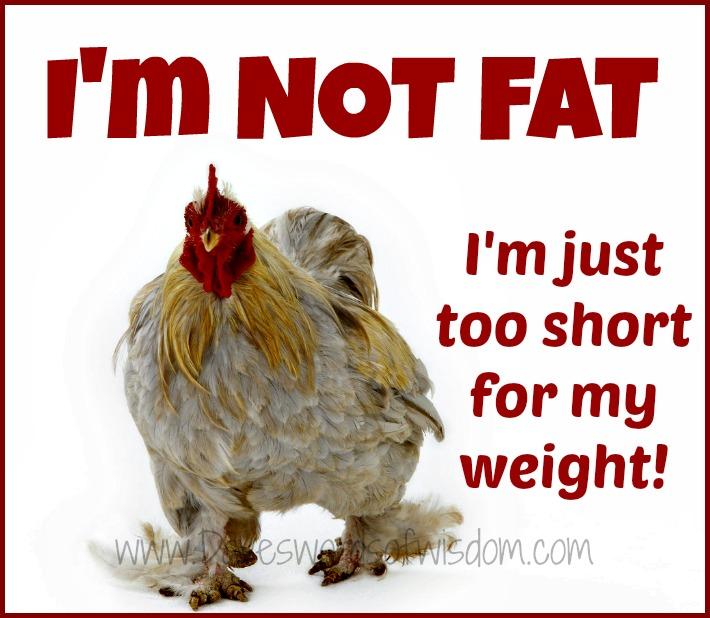 Not Fat 102