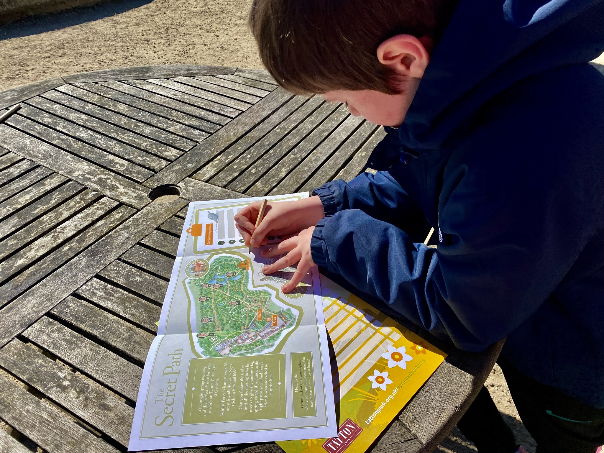 boy looking at a trail map