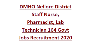 DMHO Nellore District Staff Nurse, Pharmacist, Lab Technician 164 Govt Jobs Recruitment 2020 -Application Form