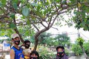Melalui Gerakan 1000 Masker, BBN Kampanyekan Toleransi Saat Imlek