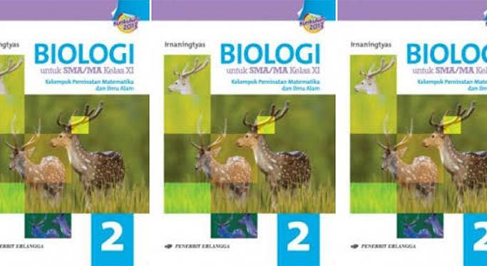 Kunci Jawaban Biologi Erlangga Kurikulum 2013 Kelas 10 Materi Animalia (Hewan)
