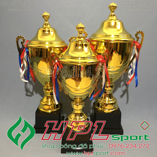 Cúp bóng đá HPL - 1323