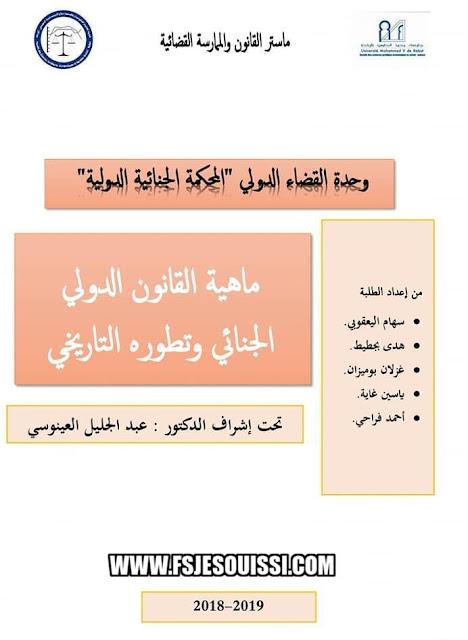 ماهية القانون الدولي الجنائي pdf