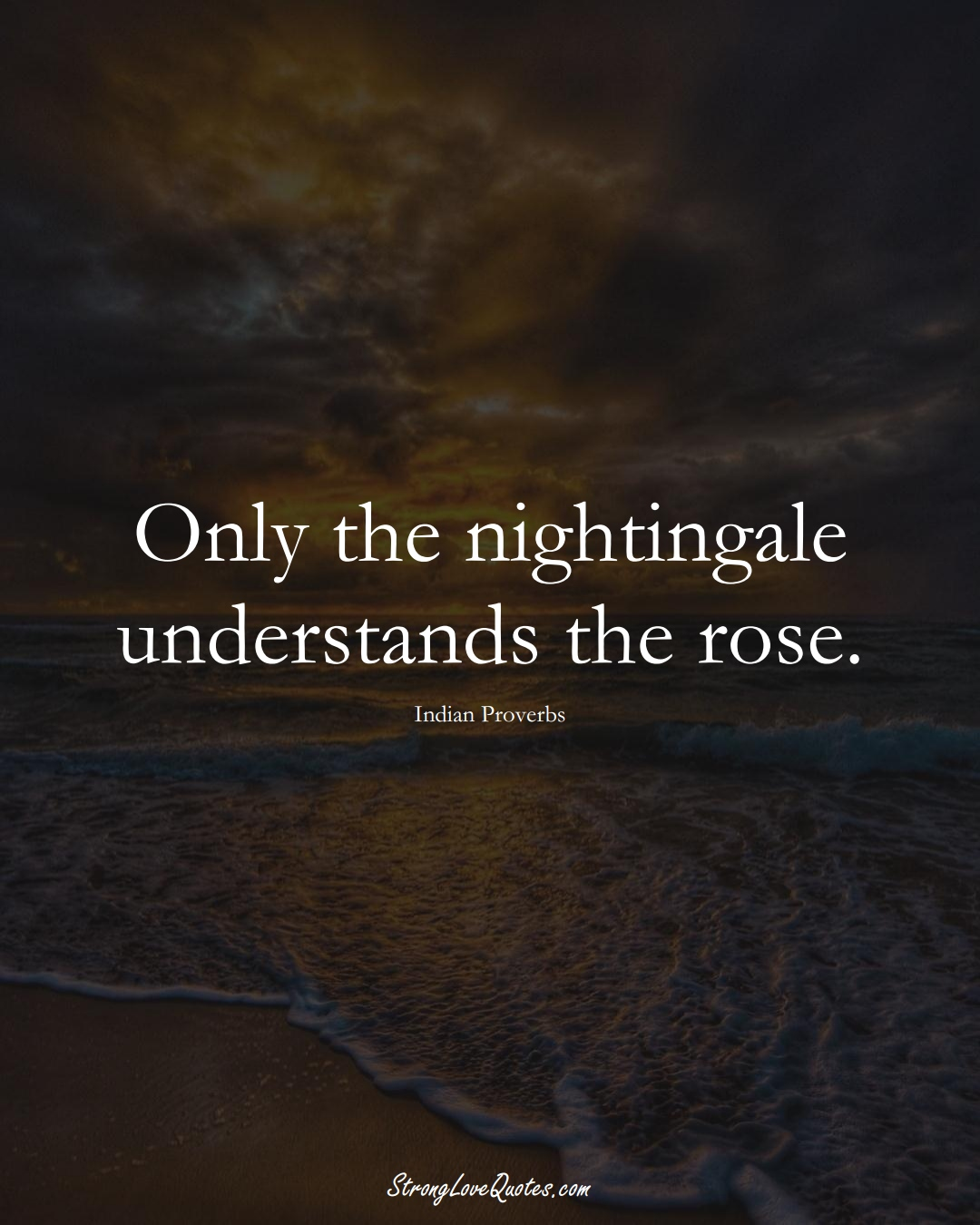 Only the nightingale understands the rose. (Indian Sayings);  #AsianSayings