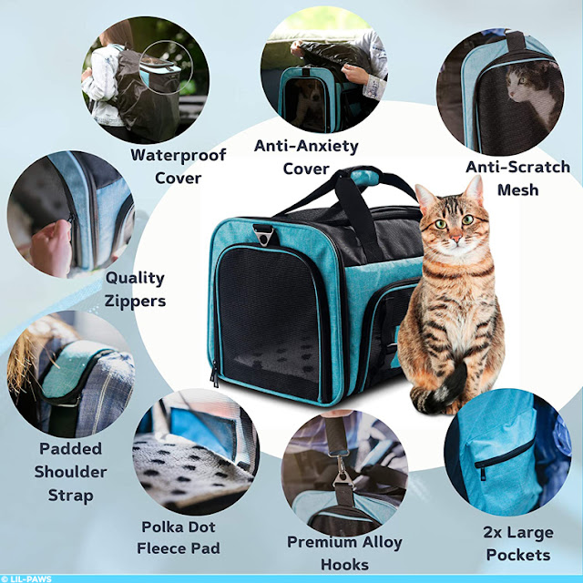 Features of the Lil-Paws pet carrier