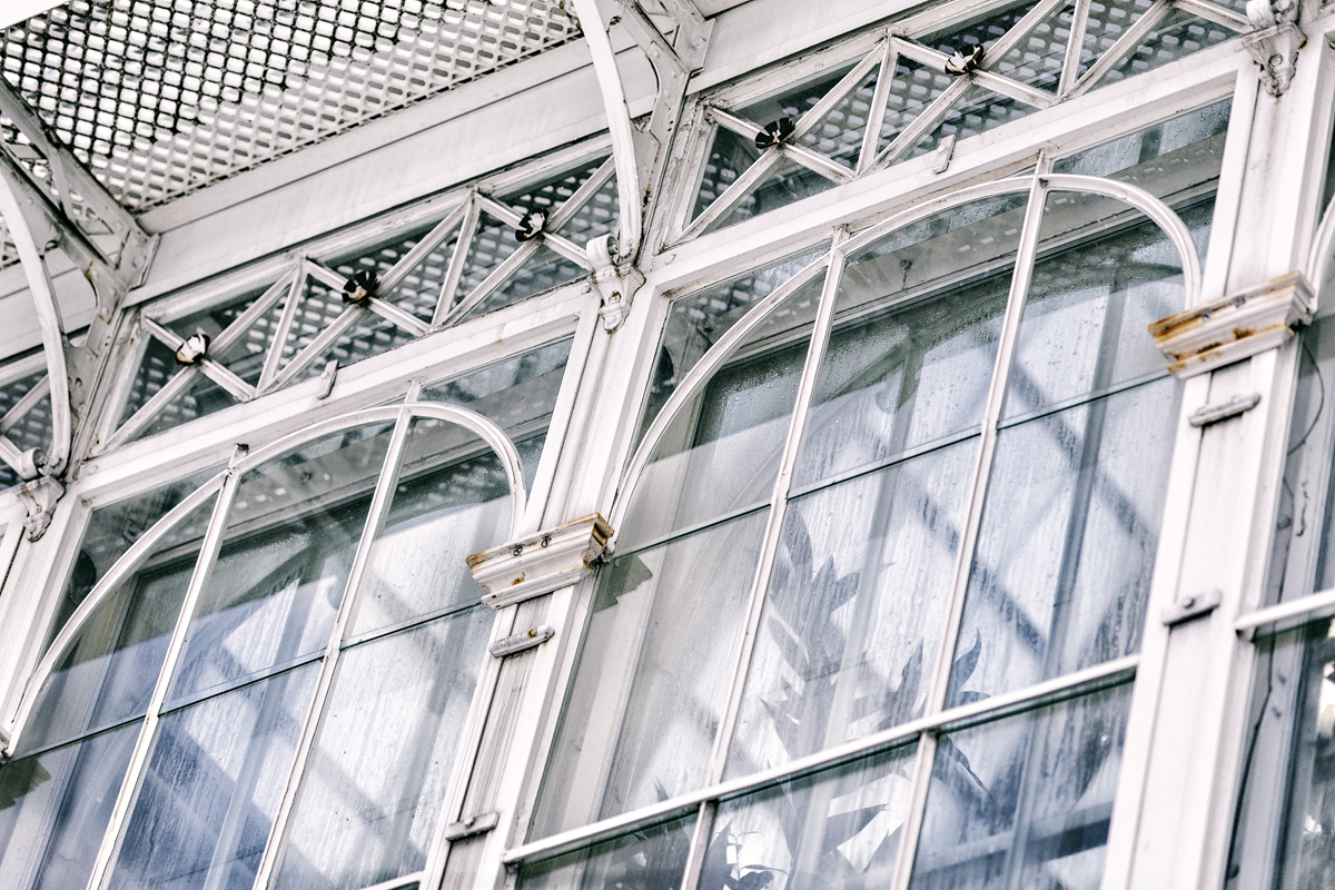 Helsinki, Suomi, Finland, Myhelsinki, Discoverhelsinki, discoverfinland, experiencefinland, valokuvaaja, photographer, Frida Steiner, Visualaddict, visualaddictfrida, valokuvaus, outdoors, outdoorphotography