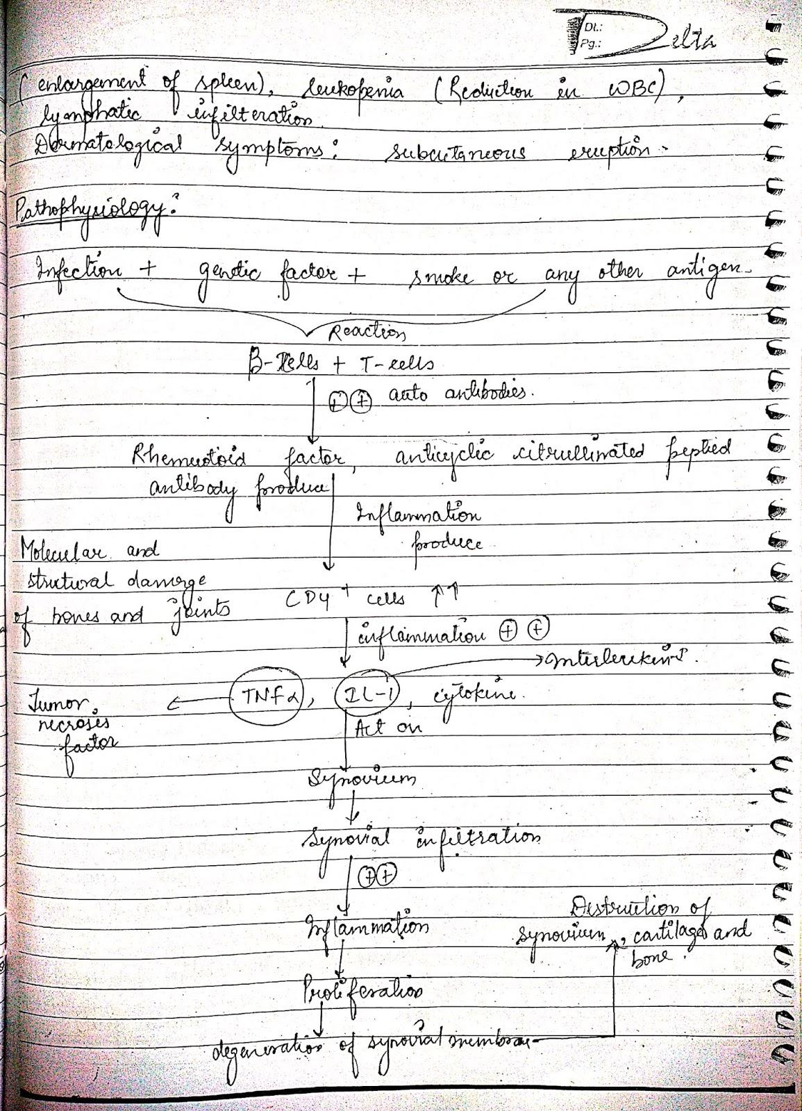 pathophysiology - rheumatoid arthritis