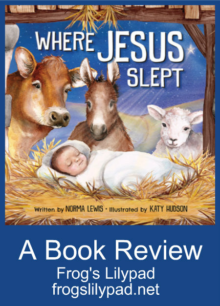 Frog's Lilypad: Where Jesus Slept Children's Book Review