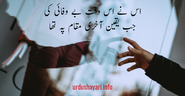 Bewafa Shayari In Urdu - 2 lines poetry image