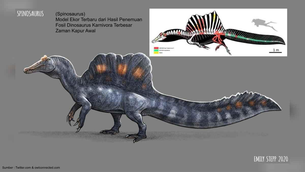 spinosaurus, dinosaurus terbesar