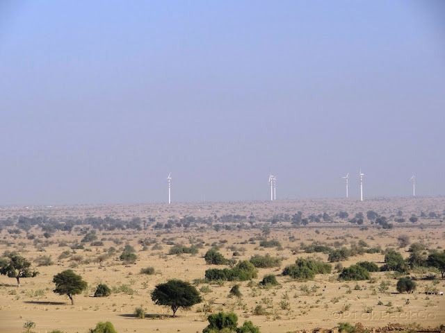 Desert land - Jaisalmer Rajasthan - Pick, Pack Go