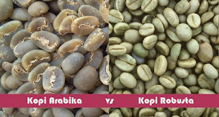 Perbedaan Kopi Arabika vs Kopi Robusta