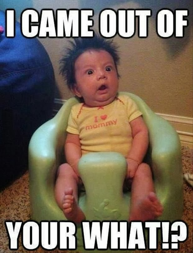 Funny Baby Meme Joke Picture - I came out of your what?