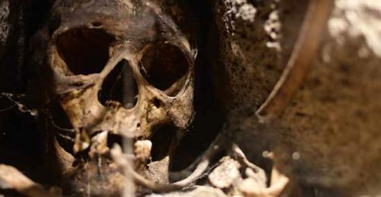 """Cientistas usam DNA para revelar identidade do """"vampiro"""" norte-americano"""