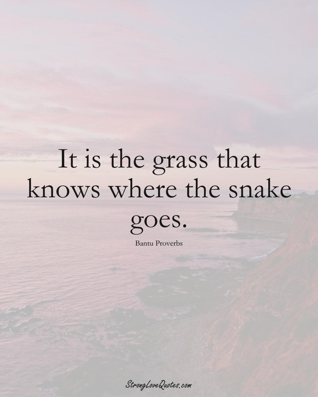 It is the grass that knows where the snake goes. (Bantu Sayings);  #aVarietyofCulturesSayings