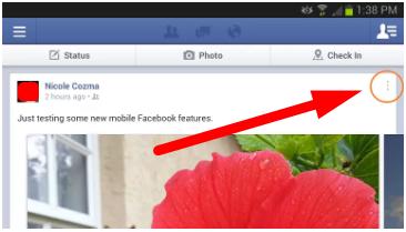 Facebook Mobile Settings