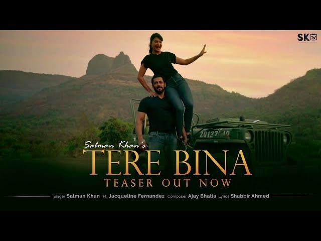Tere Bina Lyrics- Salman Khan Lyrics