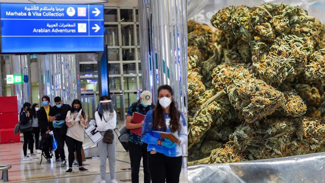 5 Ghanaians arrested in Dubai for smuggling weed; one jailed for 10 years