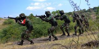 Prajurit TNI tertembak di perbatasan Papua-Papua Nugini