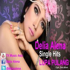Delia Alena - Lupa Pulang