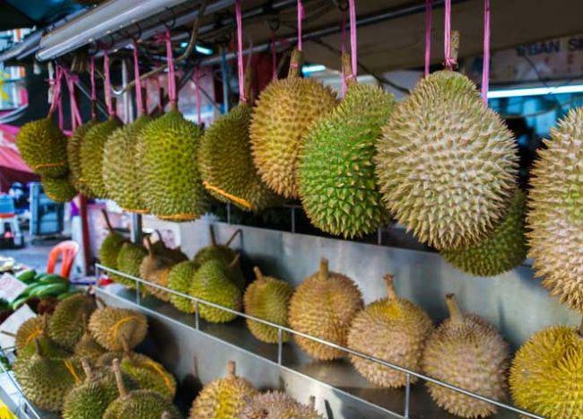 Cara Memilih Durian yang Berkualitas
