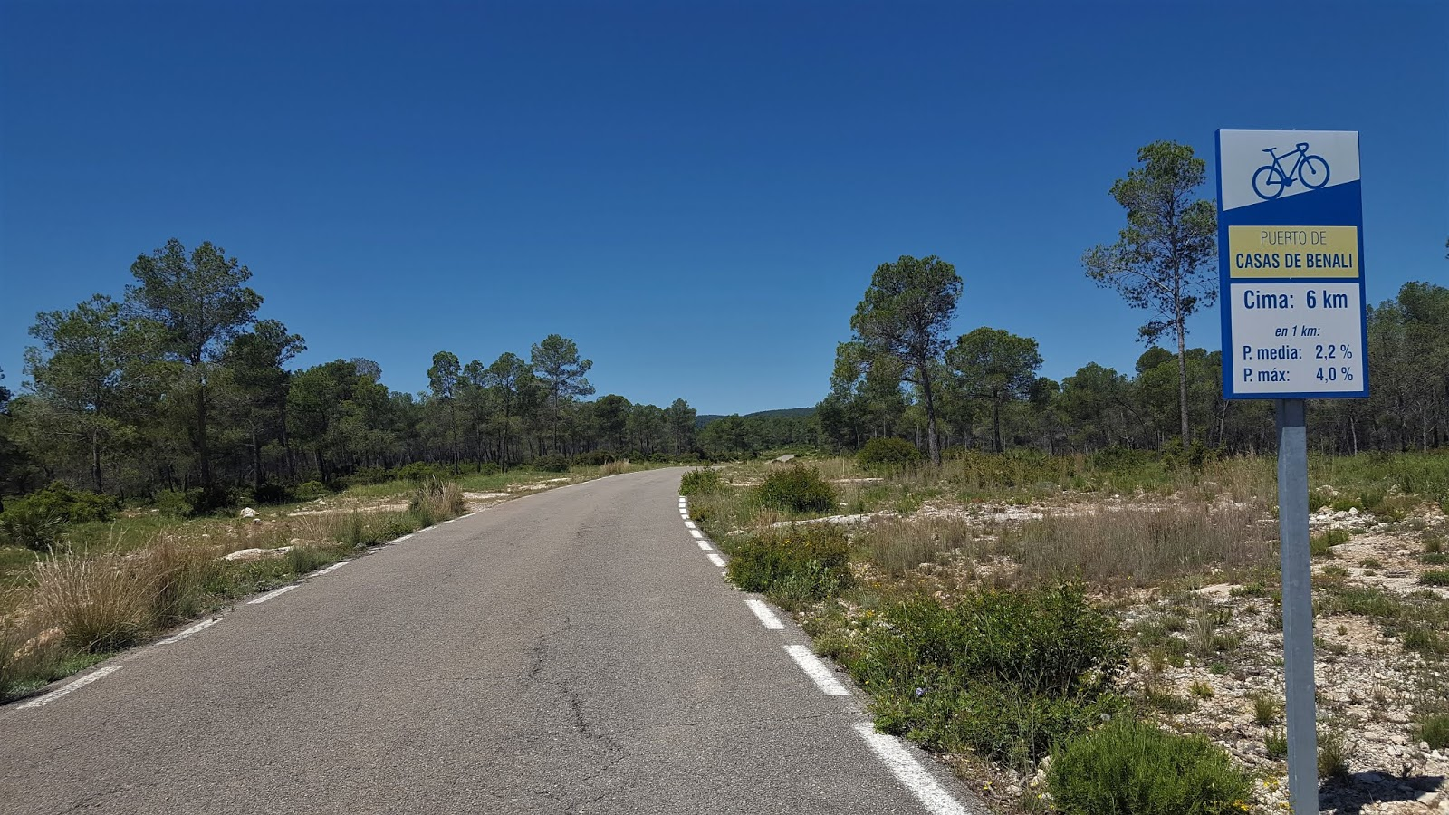 Road through Mediterranean pine forests to Casas de Benalí, Spain