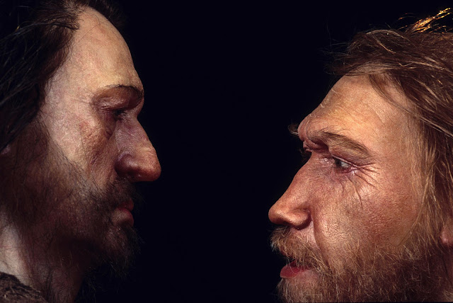 Infectious disease defenses among ancient hominid contributions to adaptation of modern humans