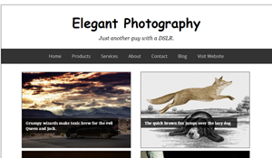 Elegant Photography Blogger Template