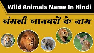 Wild Animals Name In Hindi | Jangli Janwar Ke Naam | जंगली जानवरों का नाम हिंदी और अंग्रेजी में चित्रों के साथ