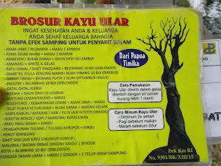 Enam Manfaat Kayu Ular Papua Sponsors Link Kayu Ular Papua Sejatinya Adalah Kayu Ular Yang Tumbuh Di Tanah Papua
