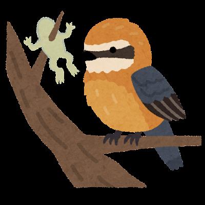 モズのイラスト(鳥)