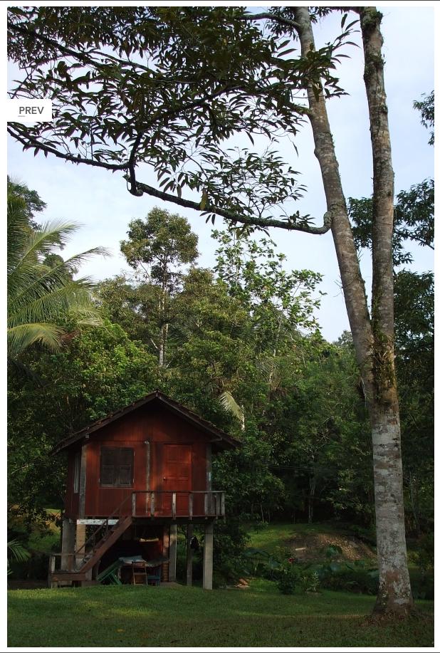 Janda Baik Pahang Zaini Guest House