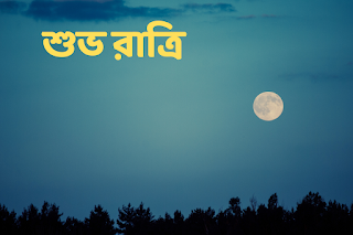 good night wishes images in bengali