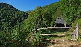 https://konicoleando.blogspot.com/2017/08/branarronda-y-el-bosque-de-los-tejos-de.html