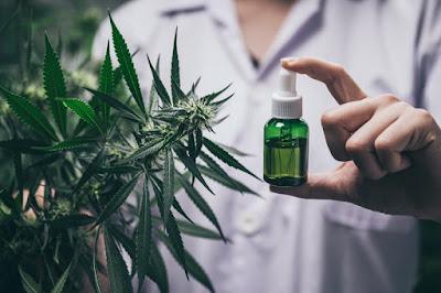 Productos elaborados con cannabis y sus principales componentes