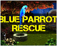 Play Mirchigames Blue Parrot R…