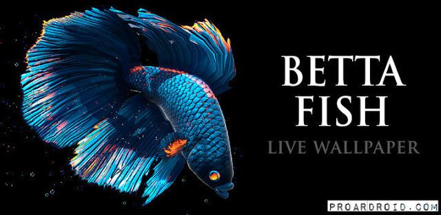 تحميل تطبيق Betta Fish Live Wallpaper