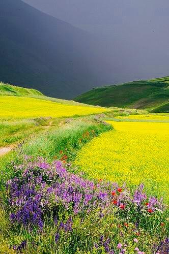 Natureza Fantástica