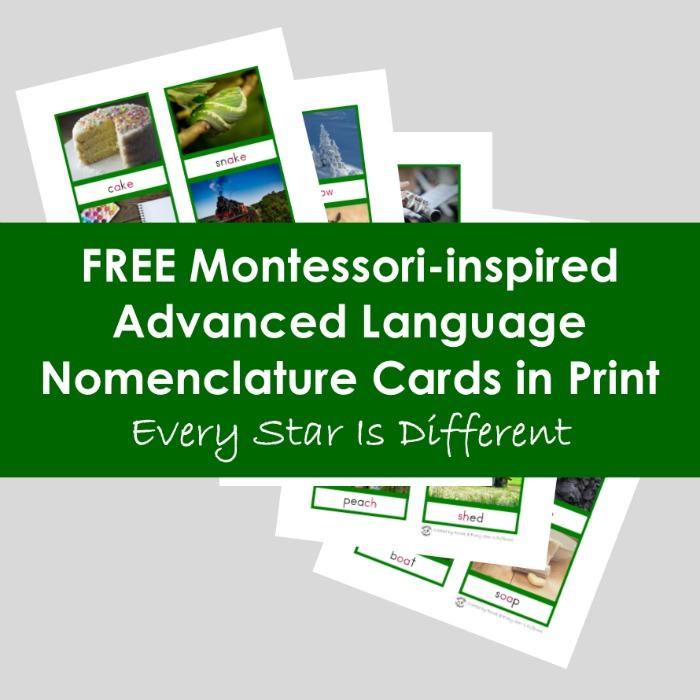 Advanced Language Nomenclature Cards in Print