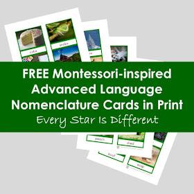 Montessori-inspired Advanced Language Nomenclature Cards in Print (Free Printable)