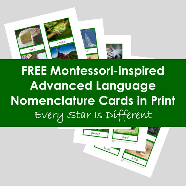 Montessori-inspired Advanced Language Nomenclature Cards in Print (Free Printable)