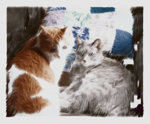 A brush painting like cat photo that was made with Processing programming language.