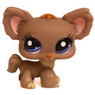 Littlest Pet Shop Dioramas Chihuahua (#1392) Pet