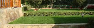 Marmara Ereğlisi bahçe bakımı