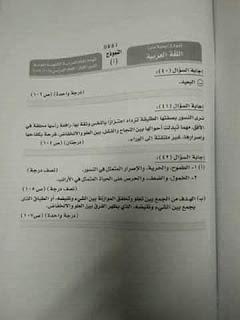 نموذج إجابة امتحان اللغة العربية للثانوية العامة 2019 دور أول 8