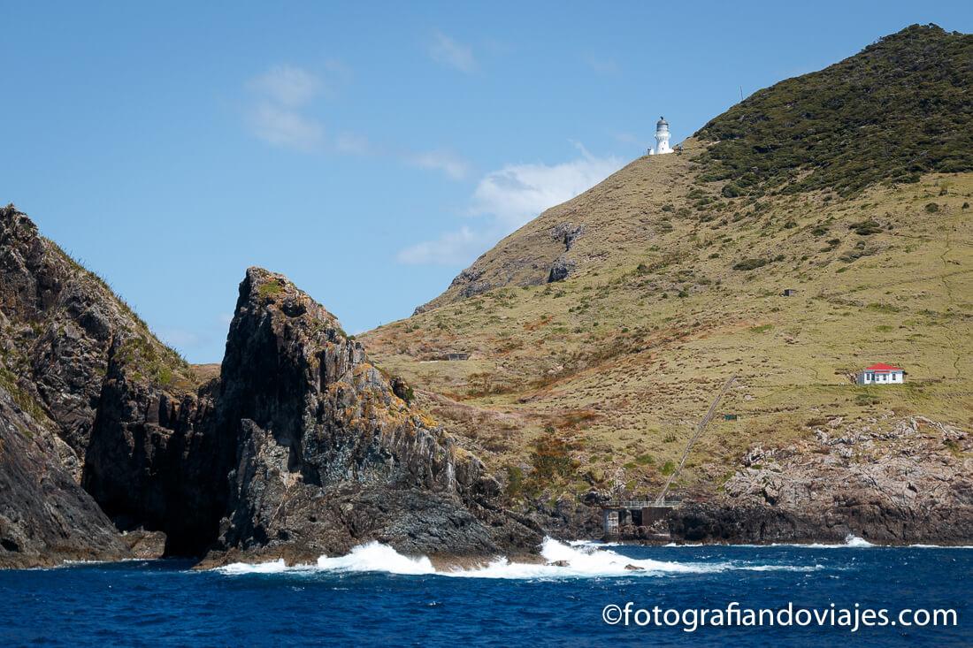 Recorrido en barco por la Bahía de las islas