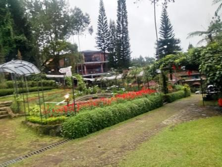 The Pinewood Lodge & Organic Farm